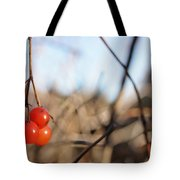Automn Fruits Tote Bag