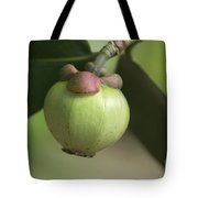 Autrograph Tree Fruit Tote Bag