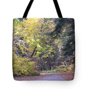 Autum Colors Tote Bag