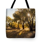 Autum Sunburst Tote Bag