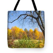 Autumn # 1 Tote Bag
