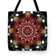 10446 Autumn 01 Kaleidoscope Tote Bag