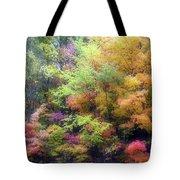 Autumn 2 - 16oct2016 Tote Bag