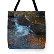 Autumn 2015 167 Tote Bag
