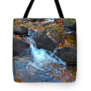 Autumn 2015 170 Tote Bag