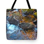 Autumn 2015 173 Tote Bag