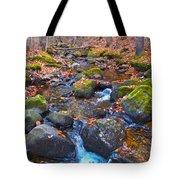 Autumn 2015 174 Tote Bag