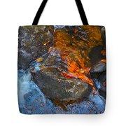 Autumn 2015 178 Tote Bag