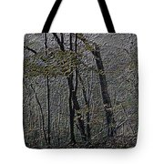 Autumn 2015 Panorama In The Woods Pa 01 Tote Bag