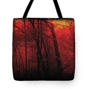 Autumn 2015 Panorama In The Woods Pa 06 Tote Bag