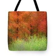 Autumn 3 - 16oct2016 Tote Bag