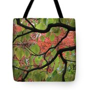 Autumn 7 Tote Bag