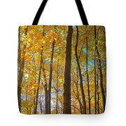 Autumn Afternoon Light Tote Bag