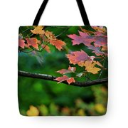 Autumn Along The Branch Tote Bag