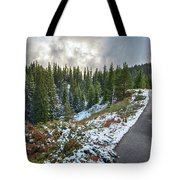 Autumn And Winter In One Tote Bag