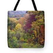Autumn Arrives In Brown County - D010020 Tote Bag