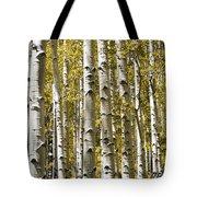Autumn Aspens Tote Bag by Adam Romanowicz
