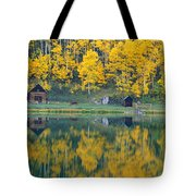 Autumn Aspens Along Route 550, North Tote Bag