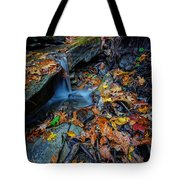 Autumn At A Mountain Stream Tote Bag by Rick Berk