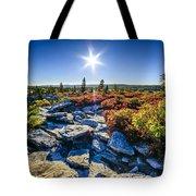 Autumn At Bear Rocks Tote Bag
