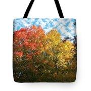 Autumn At Beaver Dam Tote Bag
