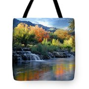 212m47-autumn At Cascade Springs  Tote Bag