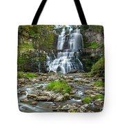 Autumn At Chittenango Falls Tote Bag