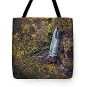 Autumn At Falling Spring Tote Bag