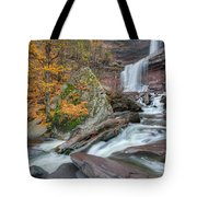 Autumn At Kaaterskill Falls Tote Bag