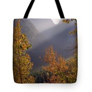 Autumn At Logan Pass Tote Bag