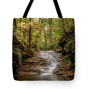 Autumn At Mill Creek Tote Bag