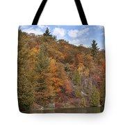 Autumn At Pink Lake Tote Bag