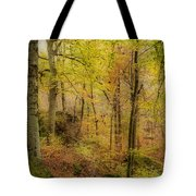 Autumn At Rim Rock Tote Bag