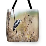 Autumn At The Meadows Tote Bag
