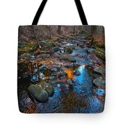 Autumn B 2015 111 Tote Bag