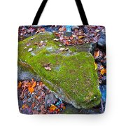 Autumn B 2015 115 Tote Bag