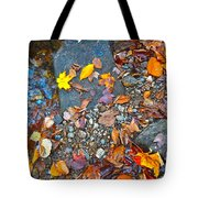 Autumn B 2015 116 Tote Bag