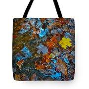 Autumn B 2015 123 Tote Bag
