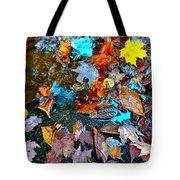 Autumn B 2015 124 Tote Bag