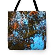 Autumn B 2015 129 Tote Bag