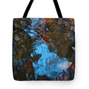 Autumn B 2015 130 Tote Bag