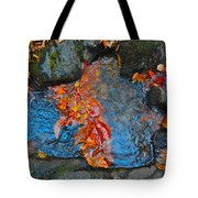Autumn B 2015 182 Tote Bag