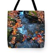 Autumn B 2015 186 Tote Bag