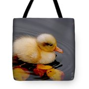 Autumn Baby Tote Bag