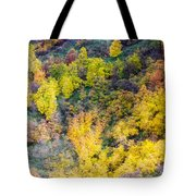 Autumn Background  Tote Bag