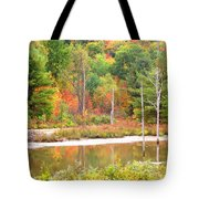Autumn Beaver Pond Tote Bag
