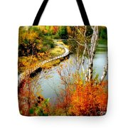Autumn Birch Lake Boardwalk Tote Bag