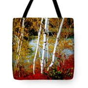 Autumn Birch Lake View Tote Bag