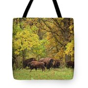 Autumn Bison Tote Bag