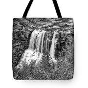 Autumn Blackwater Falls Bw Tote Bag